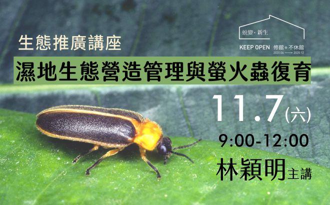 生態推廣講座|11.7濕地生態管理與螢火蟲復育|林穎明主講